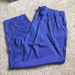 Blue Stretch Waist Pull On Pants